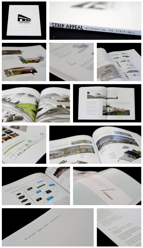 Strip-Appeal-Book-Detail-593x1024